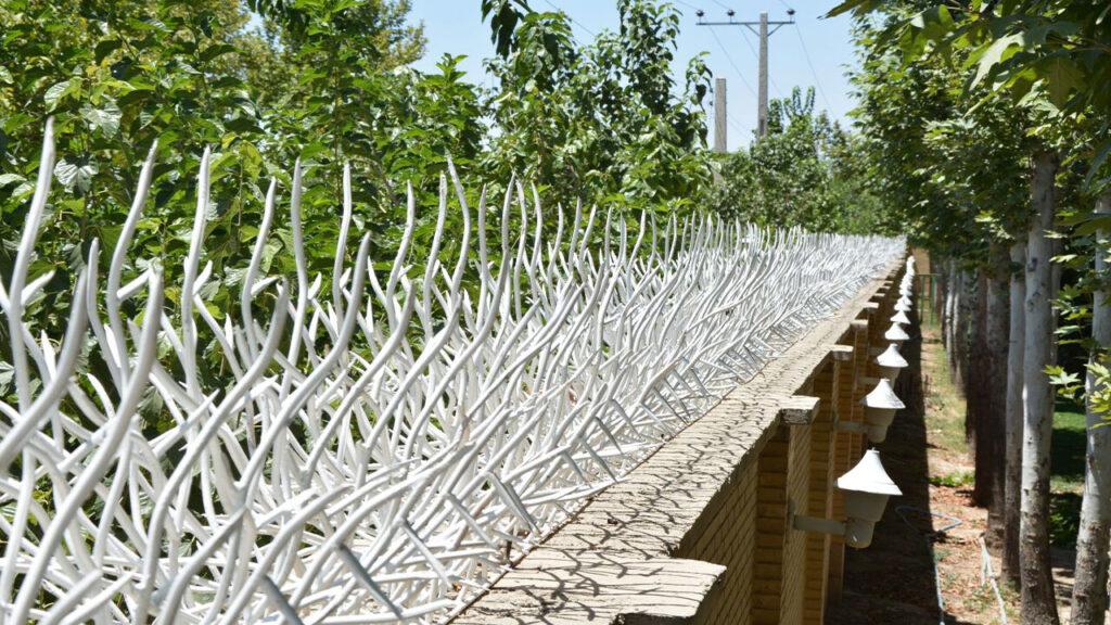 سفارش حفاظ شاخ گوزنی در رشت
